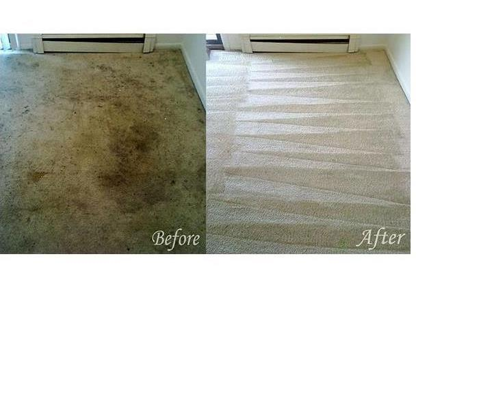 Cleaning Carpet Cleaning - Spring Cleaning