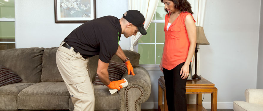 Lake City, FL carpet upholstery cleaning